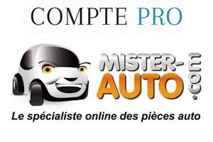 comment cr er mon compte pro mister auto gratuit en ligne sur mister. Black Bedroom Furniture Sets. Home Design Ideas