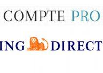 ING Direct pro banque en ligne